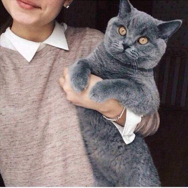 vkusnashkaaaa's Profile Photo