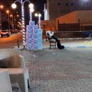 hobaahmed96's Profile Photo