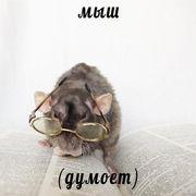 nastyaaaaa236158's Profile Photo