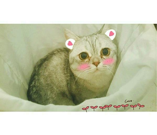 Shaun_qian's Profile Photo