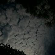 Rahaf_116A's Profile Photo