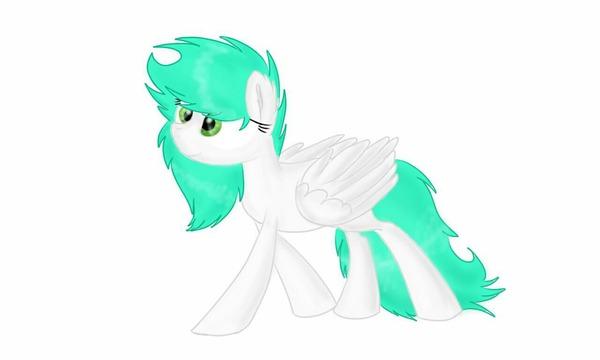 Color_Splash's Profile Photo