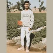AhmedAshraf395's Profile Photo