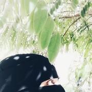 ustabraqgamal's Profile Photo