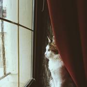 rusul_1998_'s Profile Photo