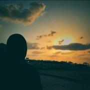 ronashokr's Profile Photo