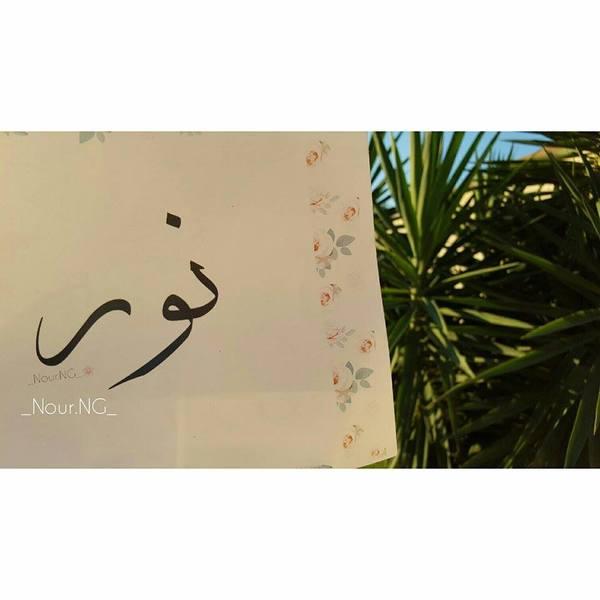 Nour_Abdulrazag's Profile Photo