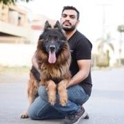 SajjadAhmad1's Profile Photo