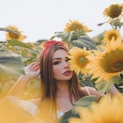 Sunflower248's Profile Photo