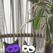 anoooonhyme's Profile Photo