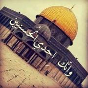 mshtaqhllrhman's Profile Photo
