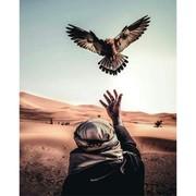 am_ira165's Profile Photo