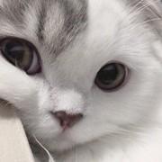 asya_love_15's Profile Photo