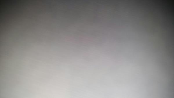 Milli9815's Profile Photo