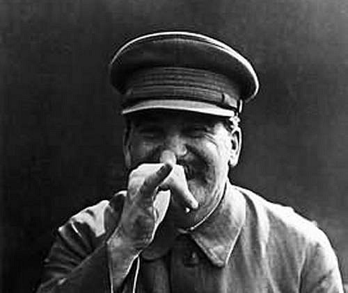 Stinchik's Profile Photo