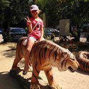 a_konyaeva's Profile Photo