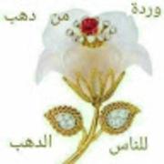 anweralshraby987's Profile Photo