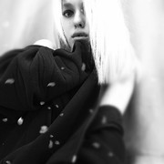 elite1378's Profile Photo