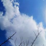 guzelgunes632's Profile Photo