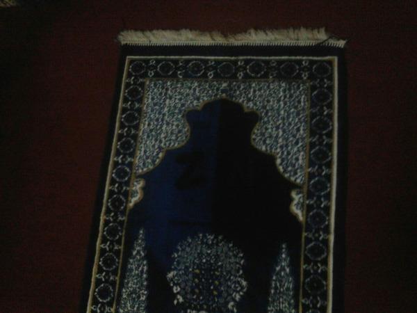 NoorAmeen123's Profile Photo