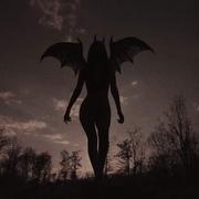 badwolfclaradoll's Profile Photo