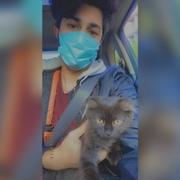 alaniosama7's Profile Photo