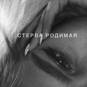 alena_food's Profile Photo