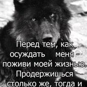 somonasoev's Profile Photo