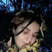 gerbutova1's Profile Photo