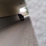 NanoSkyper15's Profile Photo