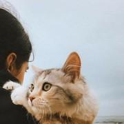 dado_157's Profile Photo