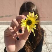Noura_kashik's Profile Photo