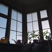 CRAZYBABY9696's Profile Photo