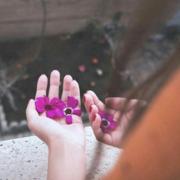 lala_lanoush's Profile Photo