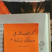rehamalsayed688's Profile Photo