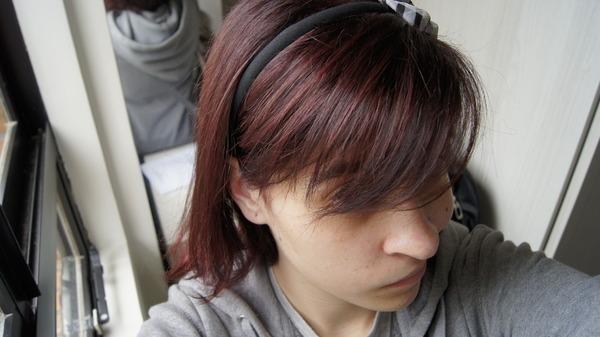 priihmeiler's Profile Photo