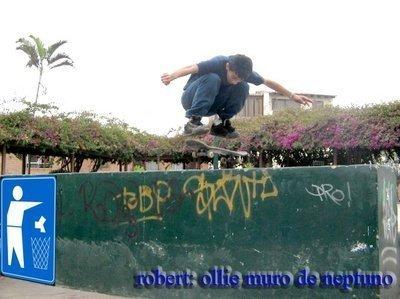 robertskb's Profile Photo