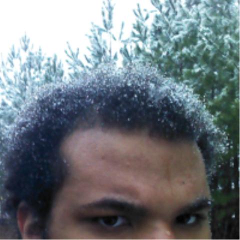 Webbs's Profile Photo
