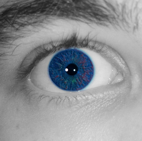 SimSimxx3's Profile Photo