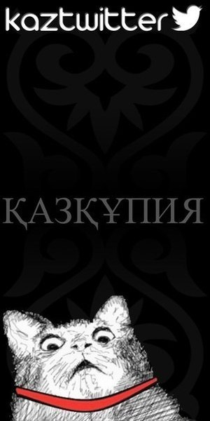 KazKupya's Profile Photo
