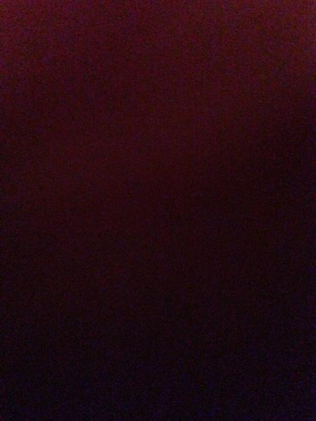elliiee_xoxo's Profile Photo