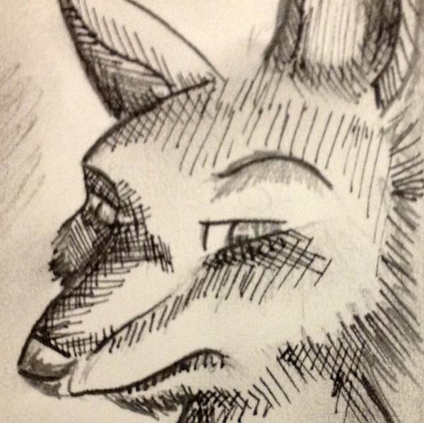 Inkfoxer's Profile Photo