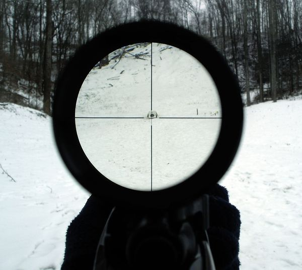 bestriflescope's Profile Photo