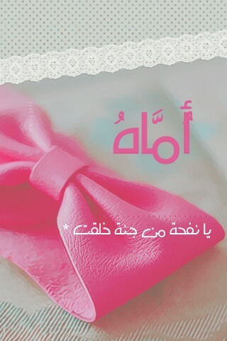 salimaljafari's Profile Photo