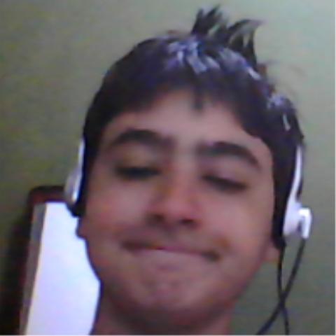 MateusHiquirio's Profile Photo