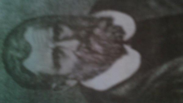 Noo_in_Smoke's Profile Photo