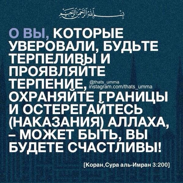 gadzhiev93's Profile Photo