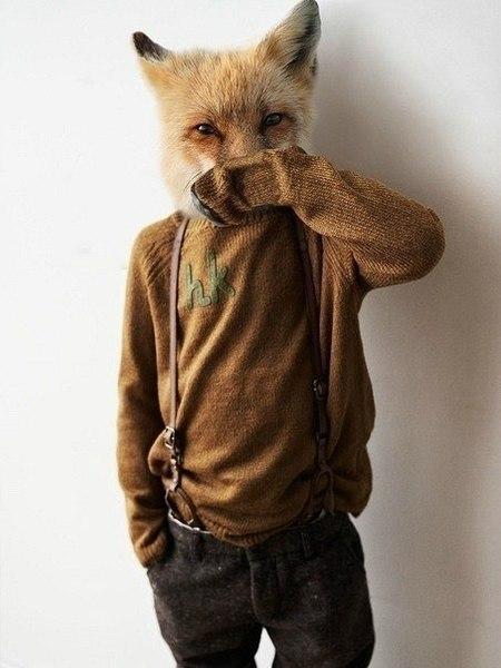 fox1115's Profile Photo
