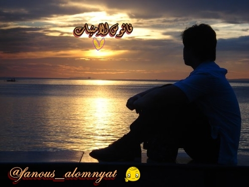 fanous_alomnyat's Profile Photo