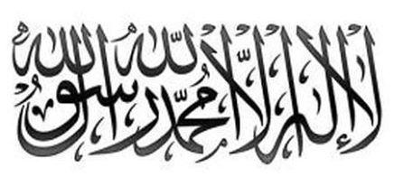 MahmoudAbdellatif842's Profile Photo